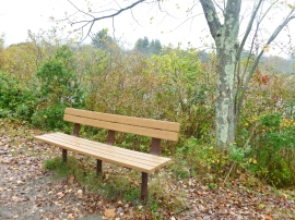 BENCH110 AIRLINE